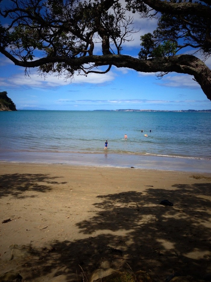 Auckland_beaches