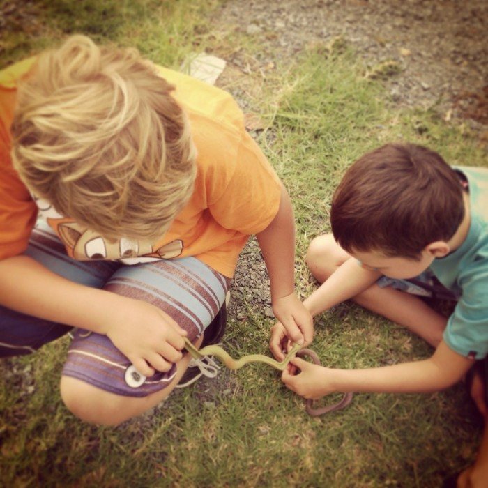 Boys_playing_snakes
