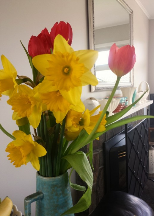 Daffodils_tulips
