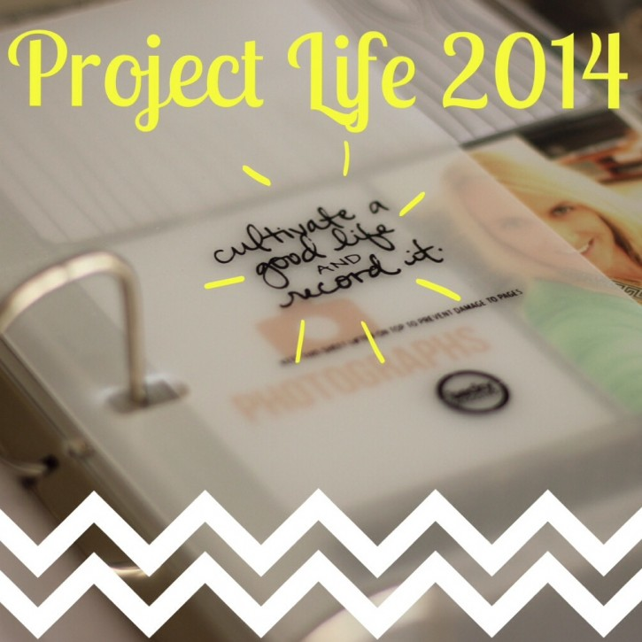 Project_life_NZ