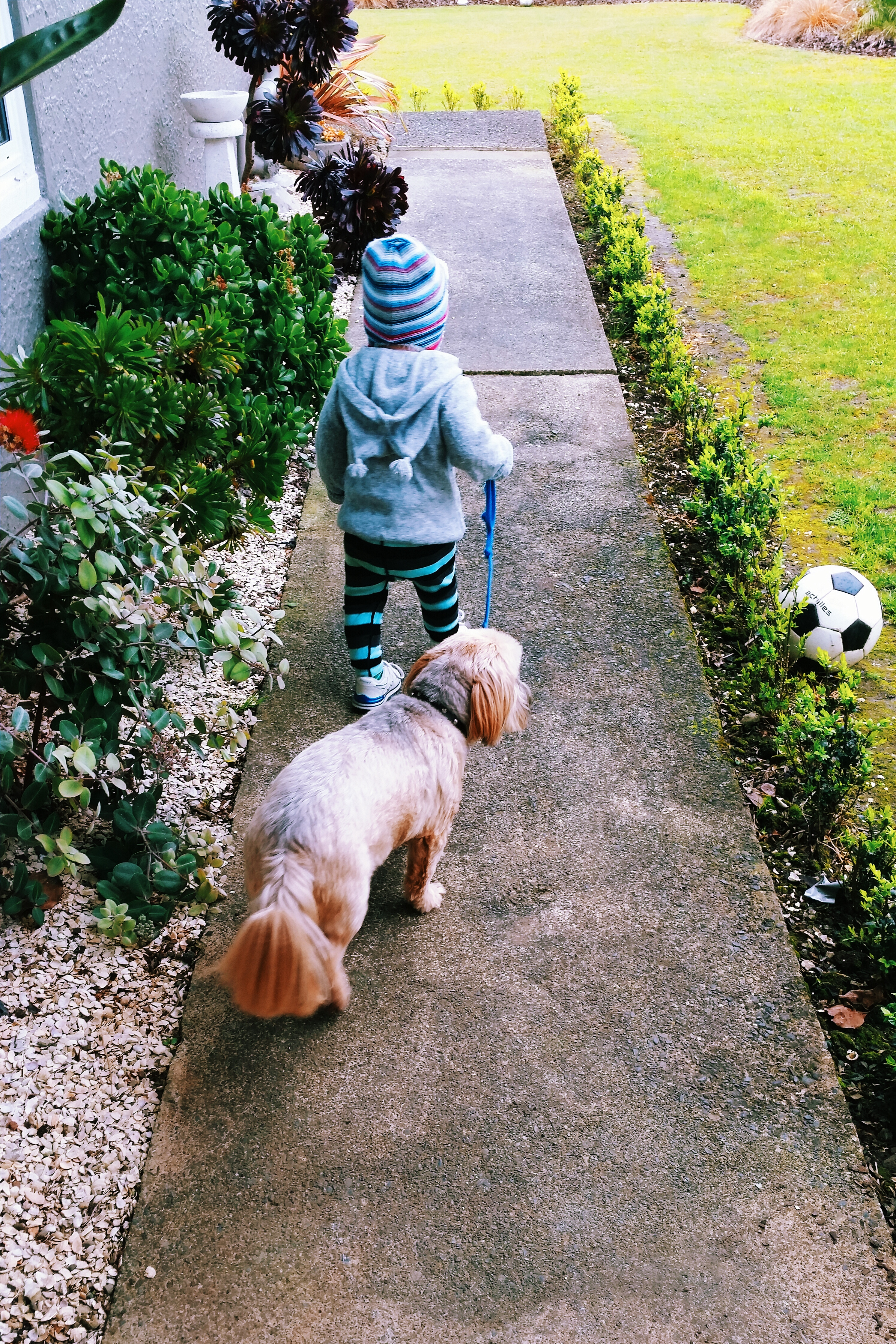 blogger-kids-auckland