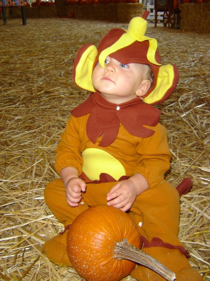 Halloween Monkey Costume